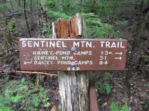 Sentinel Mountain