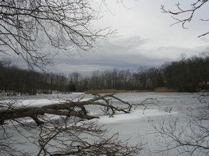 Hemlcock Lake, Mountain Lakes Park, North Salem, NY