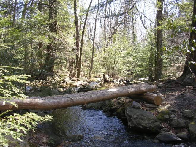 Brassie Brook Connecticut Appalachian Trail