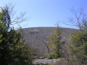 Bear Mountain CT from Paradise Lane Trail