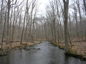 West Branch of the Saugatuck River, Devil's Den, Weston CT