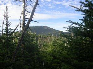 AT in New Hampshire, Garfield Ridge