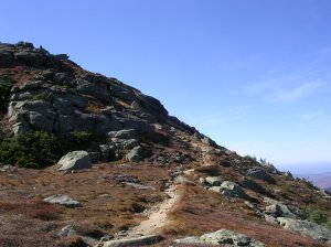 Above the treeline on the Garfield Ridge Trail.