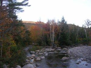 Franconia Brook near tentside, Pemigewasset Wilderness