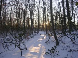 Sinking sun on the Hiltebeitel Trail, Devil's Den