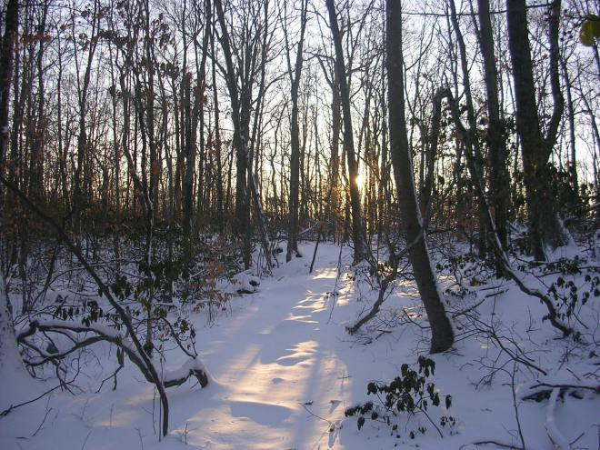 Sinking sun on the Hiltebeitel Trail, Devil's Den