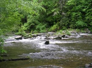 Abrams Falls Trail, Cades Cove, Great Smoky Mountains