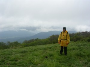 Gregory Bald, Great Smoky Mountains, TN / NC