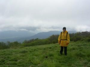 Gregory Bald, Great Smoky Mountains, TN / NC