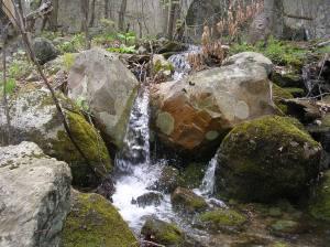 Appalachian Trail on Schaghticoke Mountain just north of Bulls Bridge CT