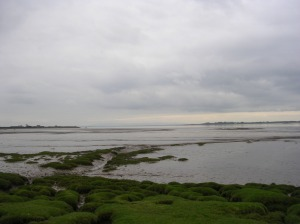 Day 41 - THE END. The Solway Firth at Annan.