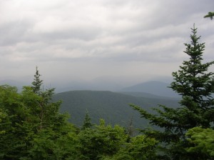 From Panther Mountain summit.