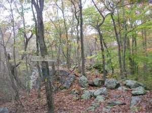 The Hiltebeitel Trail, Devil's Den, Weston CT -- destination of one of my AMC hikes