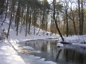The Mill River, Sleeping Giant State Park