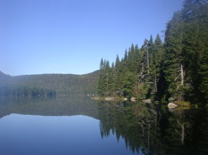 Morning on Brooktrout Lake, West Canada Lake Wilderness
