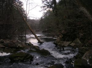 The Saugatuck River below the falls