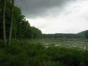 Bennett's Pond, Ridgefield