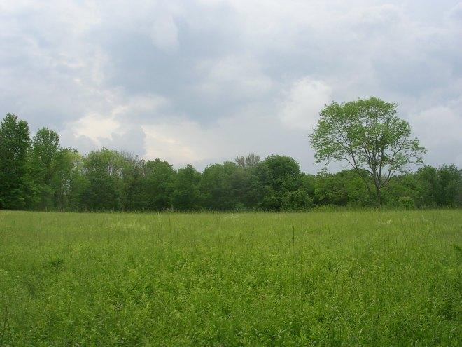 Bennett's Pond State Park, Ridgefield CT