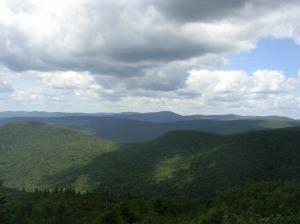 Big Indian Wilderness from Peekamoose Mountain