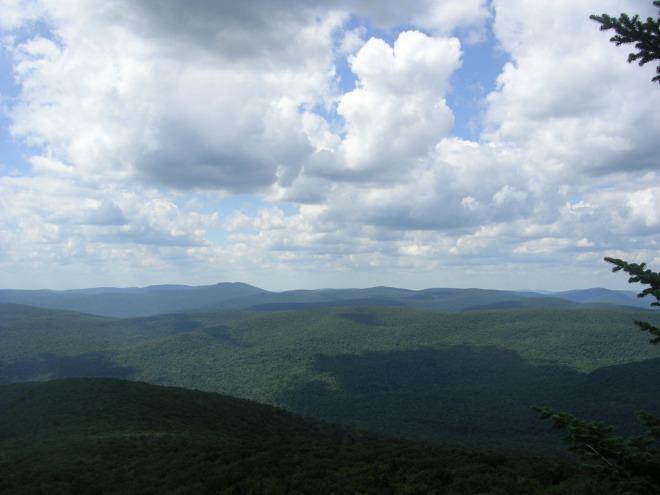 The Catskills Wilderness