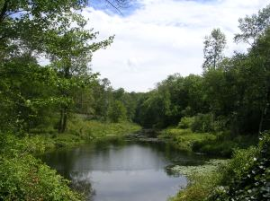 The Saugatuck River in Redding, below the falls, above the reservoir