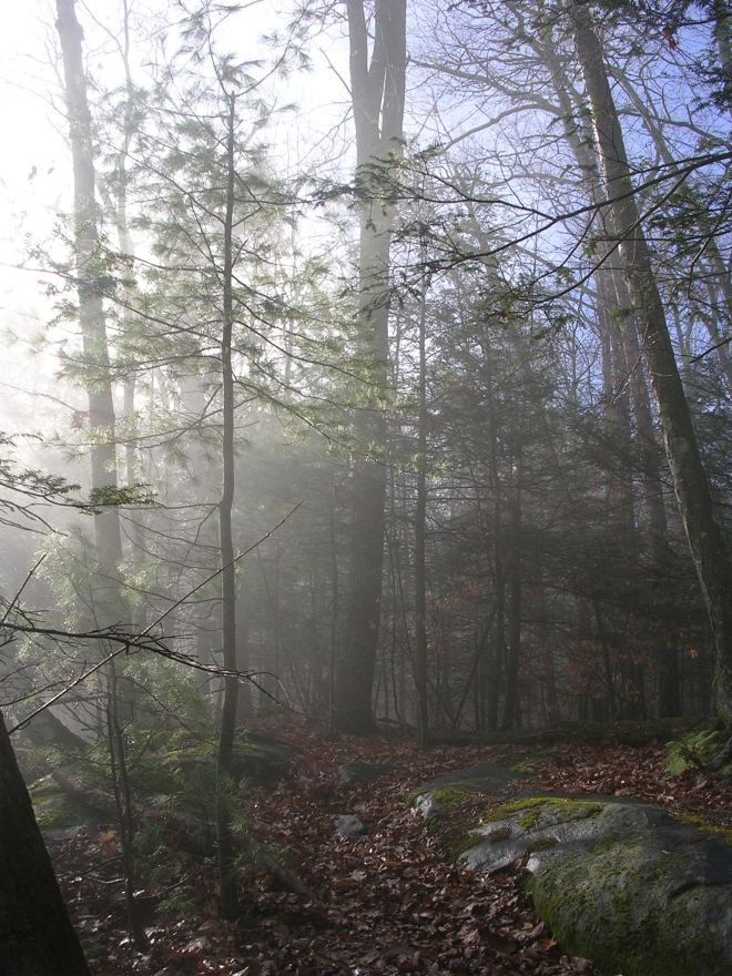 Misty Housatonic Range Trail