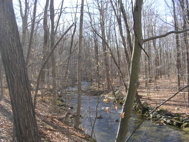The Little River Preserve, Redding