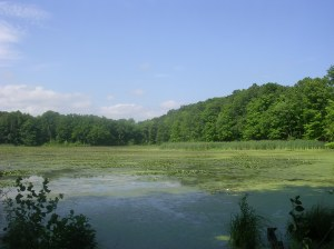 Highland Pond, Mattabesett Trail, Middletown CT