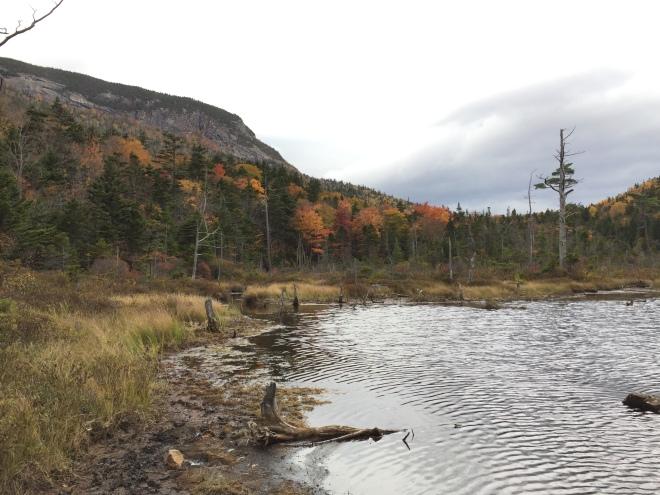mad-river-notch-a-spur-of-mount-osceola