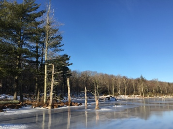 beaver-pond-beside-the-mattatuck-trail-cornwall-ct