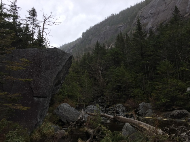 Cliffs by Avalanche Lake, Adirondack High Peaks