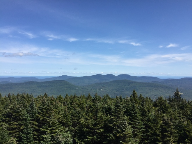 Looking northwest from the Hunter Mountain fire tower —Thomas Cole Mtn, Black Dome, and Blackhead right of center