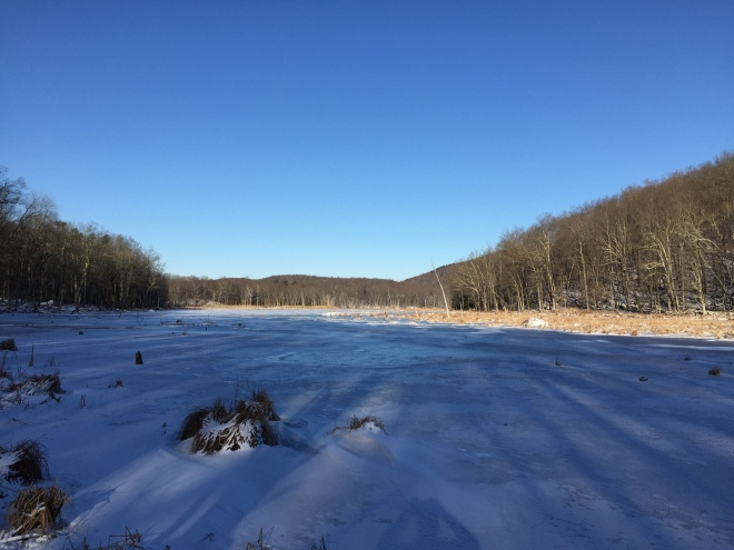 Bennett's Pond, Ridgefield CT