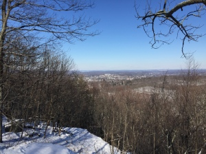 Danbury CT from Mootry Peak Lookout, Ives Trail