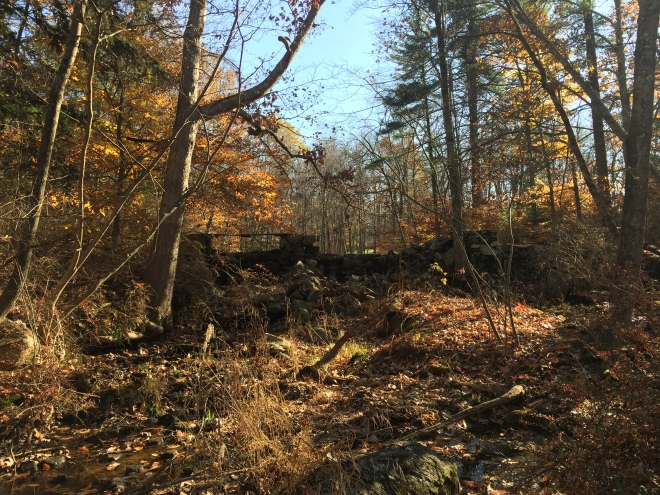1. Dam on Blackman_s Pond Brook
