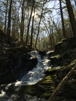 Bonney Brook, Dark Entry, Mohawk Trail