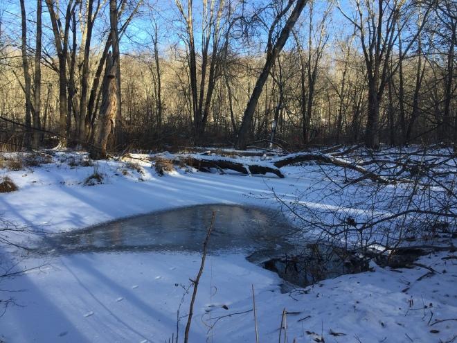 West Branch Saugatuck River, Devil's Den, Weston CT