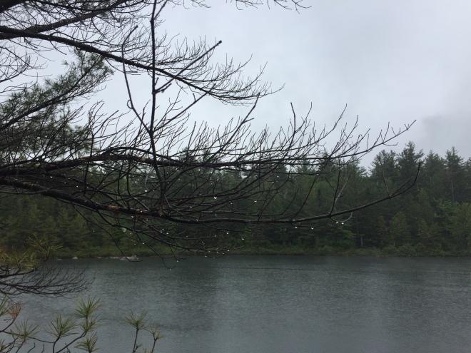 Pogy Pond, Baxter State Park