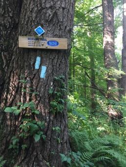 Mohawk Trail, Johnson Road, Cornwall CT