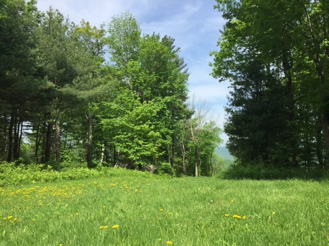 mohawk mountain ski runs in spring