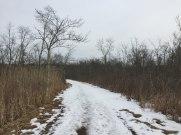 Mattatuck Trail in White Memorial Conservation Center