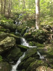 Tributary brook tumbling into Sages Ravine