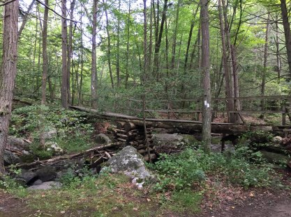 Rickety bridge across Deuel Hollow Brook