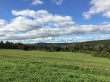 Dutchess County scene