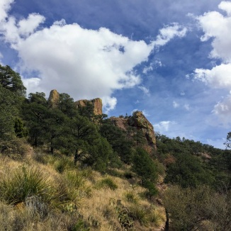 Trailside rocks