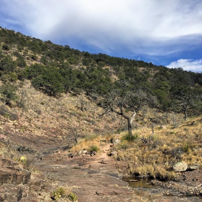 Dry creek near South Rim