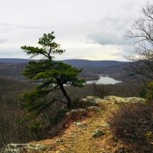 Silver Mine Lake II