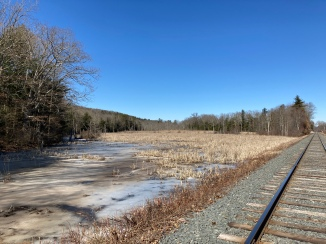 Return leg - trackside swamp